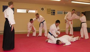 A typical aikido class